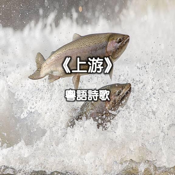 靈修曲選:上游 (粵語)